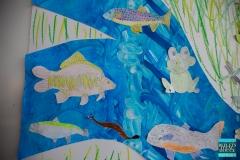 Animation avec l'association Reflets d'eau douce